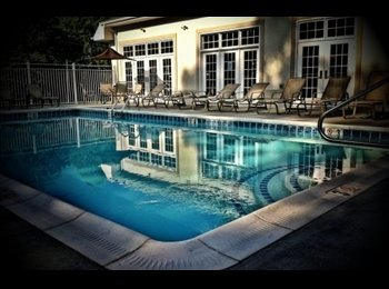 EasyRoommate US - Completely furnished apartment/pets allowed $389 - Johnson City, Johnson City - $389