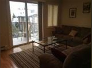 $1200 Room in spacious 2BR, Available Feb 1st