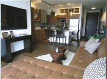EasyRoommate US - Room for Rent in Luxury Apartment Building - St Petersburg, St Petersburg - $900