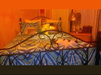 Want a Short-Term Room in a Nice Apt w/ Friendly Roommates?
