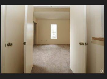EasyRoommate US - Female professional looking for roomate - Tucson, Tucson - $400