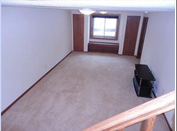 EasyRoommate US - Basement Level for Rent - Brooklyn Park / Brooklyn Center, Minneapolis / St Paul - $500