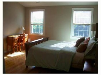 EasyRoommate US - Looking for a housemate to share a modern/open-lay - Cambridge, Cambridge - $1150