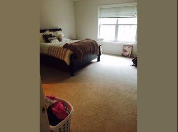 Huge room for rent!