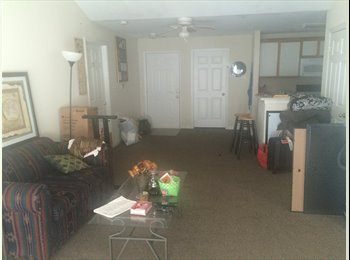 $383/month Room for Rent University Area