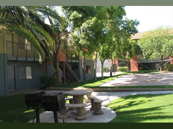 EasyRoommate US - 1br - $505 a month for a $705 worth apt (6 month) - Tucson, Tucson - $505