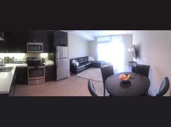 EasyRoommate US - Downtown San Jose....Brand new complex!! - San Jose, San Jose Area - $1340