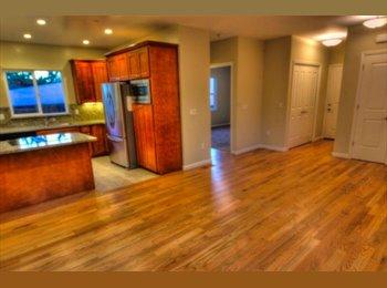 EasyRoommate US - Large Single Room in GORGEOUS BRAND NEW House - Santa Clara, San Jose Area - $1000