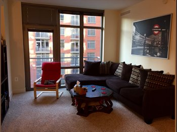 Roommate wanted in NoMa luxury apartment!