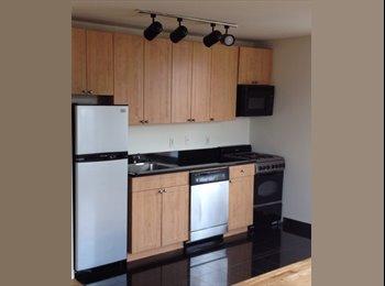 EasyRoommate US - 1br in 2br East Village Luxury Bldg - East Village, New York City - $1675