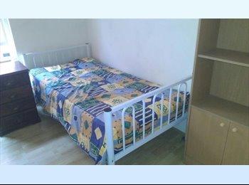 EasyRoommate AU - Sunny cheap room Randwick Near UNSW - Randwick, Sydney - $210