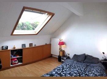 Appartager BE - Cherche Colocataire - Louvain-la-Neuve, Louvain-la-Neuve - €286