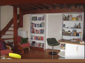 Appartager BE - Spacious room in sunny appartment, giant terrace - Molenbeek Saint Jean - Sint Jans Molenbeek, Bruxelles-Brussel - €620