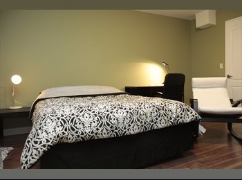 A fully-Furnished room for rent