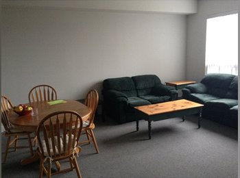 Sublease, Janurary-April