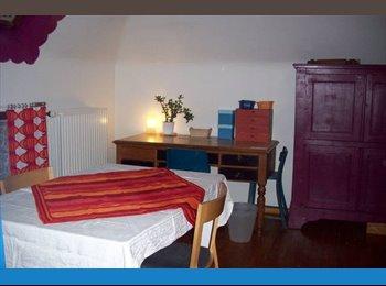 EasyKot EK - ruime kamer in hartje Mechelen - Centrum, Mechelen-Malines - €350