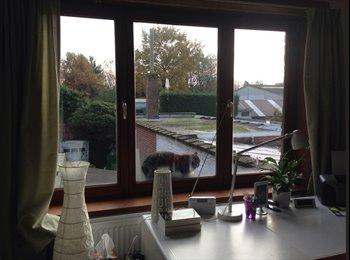 EasyKot EK - Kot te huur in Gent-Brugge (dicht bij merelbeke) - Gentbrugge, Gent-Gand - €330