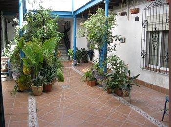 EasyPiso ES - Se alquila piso en S Andres/ City Center - Centro Ciudad - Casco Histórico, Córdoba - €230
