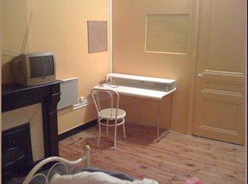 Appartager FR - Chambre dans appartement en coloc meublé/équipé - Saint-Etienne, Saint-Etienne - €280