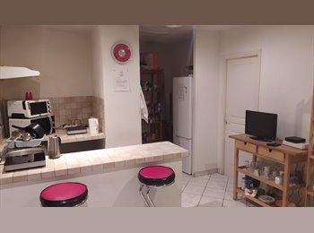 Appartager FR   Chambre centre villle disponible fin fevrier - Cœur de Ville, Nice, Nice - 410 par Mois,€ - Image 1