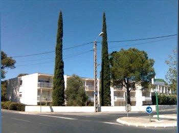 Appartager FR - Studio dans immeuble rénové - Hôpitaux-Facultés, Montpellier - €500