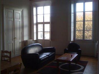 Chambre dans vaste appartement Centre Nice