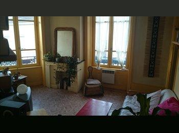 Appartager FR - Cherche colocataire pour me remplacer - 7ème Arrondissement, Lyon - €380