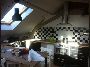 Appartager FR - Colocation de qualité dans appartement en hyper-ce - Angers, Angers - €365