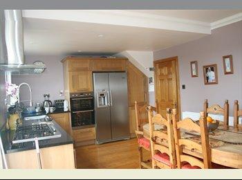 EasyRoommate IE - 2 Rooms Available - 2 Twin - Dublin City Centre, Dublin - €650