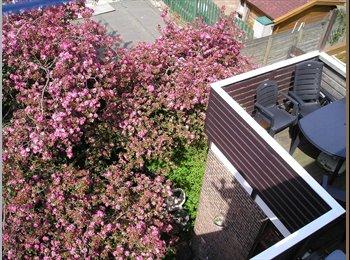 EasyKamer NL - Furnished rooms for rent - Delfshaven, Rotterdam - €349