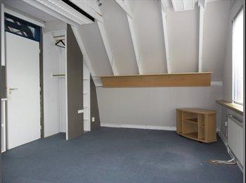 EasyKamer NL - Kamer te huur - Delft, Delft - €355