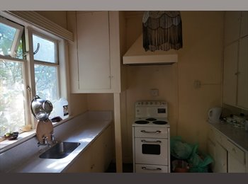 NZ - Flat for students/tourists ASAP on the Terrace - Kelburn, Wellington - $200