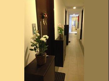 Designer One bedroom apartment for rent