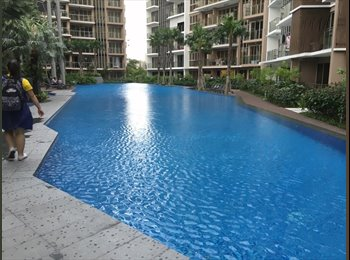 EasyRoommate SG - Spacious & Clean Common Room/Master Room - Toa Payoh, Singapore - $850