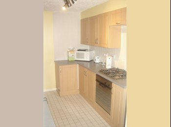 EasyRoommate UK - Lovely double room in light and airy house - Wolverton, Milton Keynes - £400