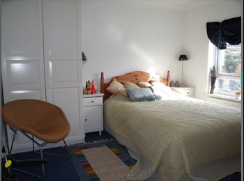 A FAB house in Salford Quays looking for FAB roomy.