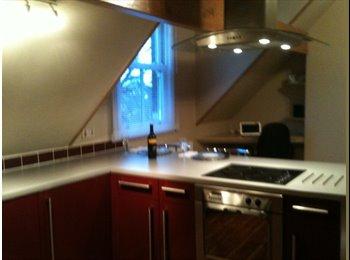 Your own Victorian attic flat, Erdington?