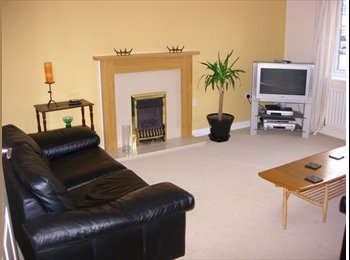 EasyRoommate UK Single Room Modern House inc Bills/WiFi - Bowthorpe, Norwich and South Norfolk - £330 per month - Image 1