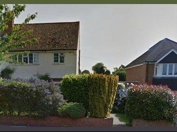 EasyRoommate UK - Double Room to rent in Caversham - Caversham, Reading - £550