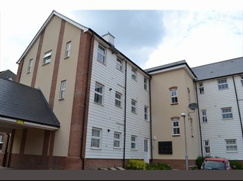 EasyRoommate UK - FURNISHED DOUBLE ROOM - Costessey, Norwich and South Norfolk - £400