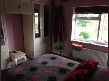 2 rooms available in Sutton Coldfield for professional...