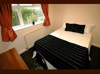 Large double-sized bedrooms in professional area!