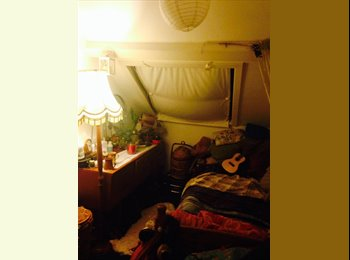 EasyRoommate UK - Single but cosy room in a warm and friendly home - Plymouth, Plymouth - £310