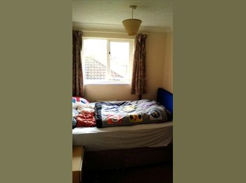EasyRoommate UK - Single room to rent in Chichester: PO19 6FJ - Chichester, Chichester - £300