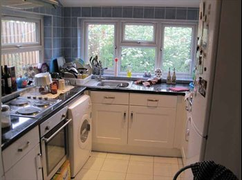Double room available in Forest Gate