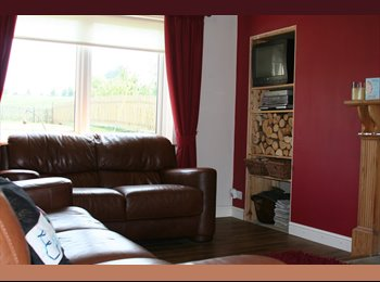 Really large double room with a great view to rent