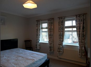 EasyRoommate UK - Exceptionally large room for professional/graduate - Newport, Newport - £495