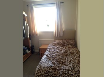 Lovely room to rent - with professional couple