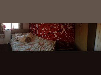 EasyRoommate UK - Double Room for Rent - Clayton, Newcastle under Lyme - £350