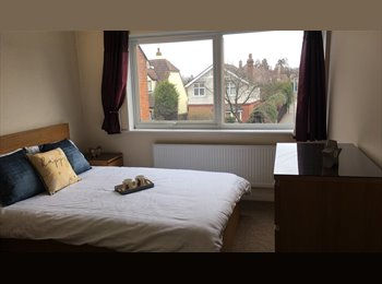 EasyRoommate UK - Lexden Luxury - Stanway, Colchester - £541